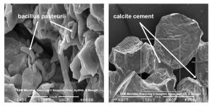 Calcite cement