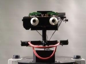 ERWIN_robot